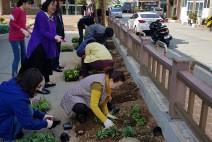 완도교육지원청, 식목행사 및 환경 정화 활동